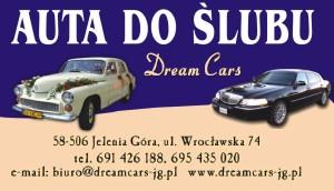dream cars wizytówka1